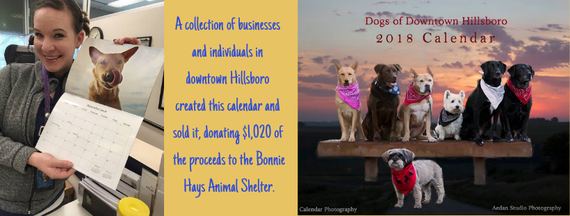 A group of businesses made a calendar of dogs and sold it to raise money for the shelter