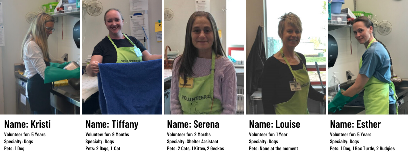 Photos of 5 different volunteers who came in to do laundry and dishes during the COVID-19