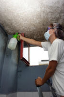 mold treatment