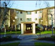 Holly Tree Apartments - Beaverton