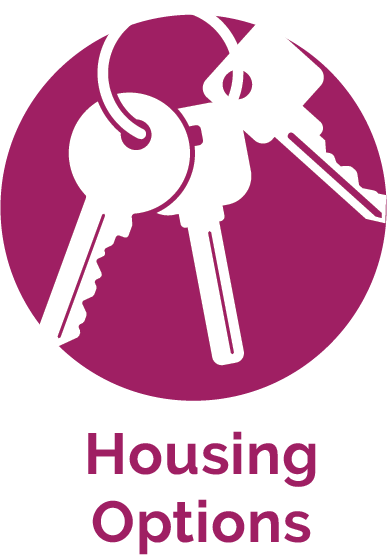 Housing Options Icon
