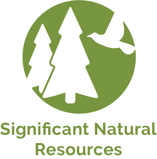 Significant Natural Resources