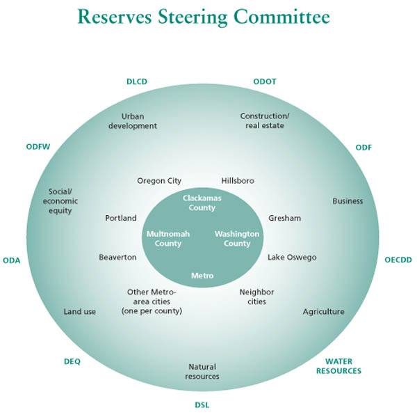 Reserves Steering Committee Diagram