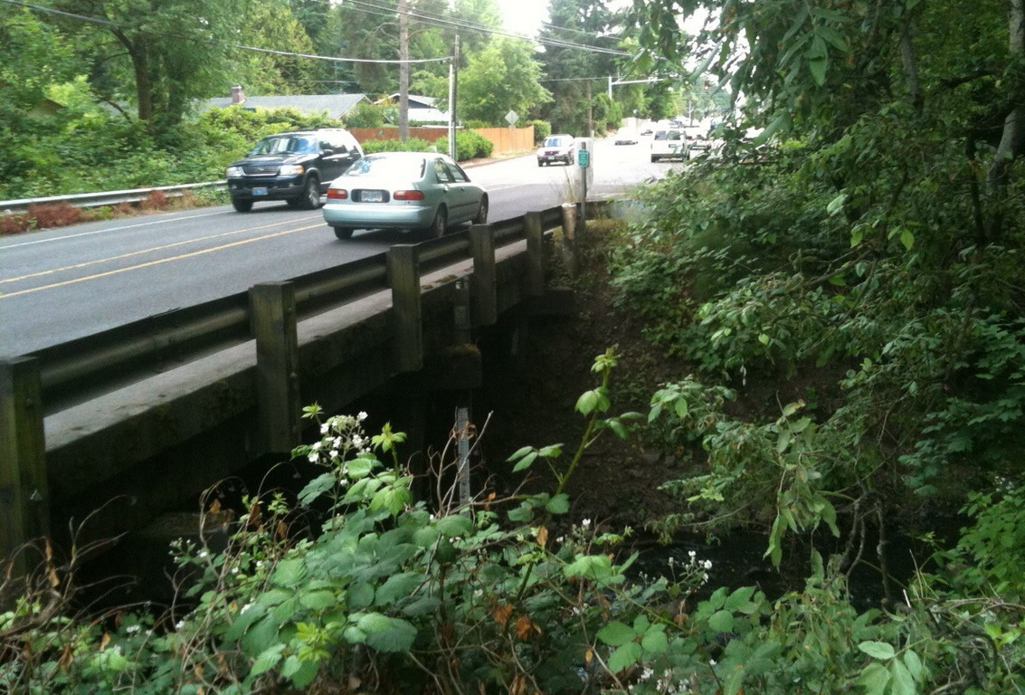 Scholls Ferry Bridge @ Fanno Creek before construction