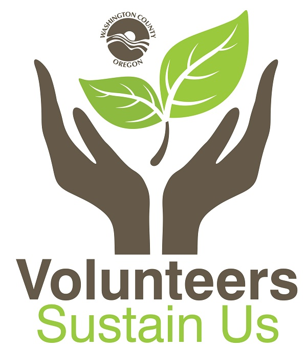 2014 Volunteer Recognition logo-resize